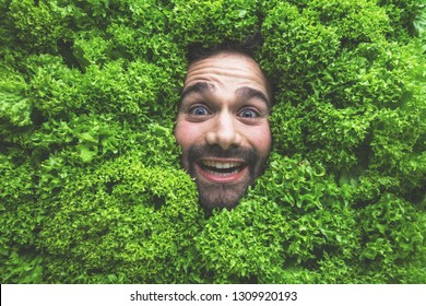 Man with salad, concept for food industry. Face of laughing man in salad area.