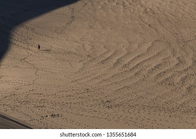 man with sandboard on the slopes of High Dune in Great Sand Dunes National Park and Preserve (Saguache county, Colorado, USA)