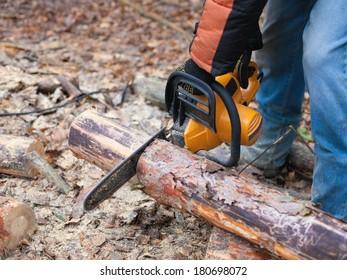 Man sawing  firewood