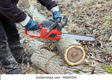 Man sawing the log of walnut tree in garden with chainsaw, closeup