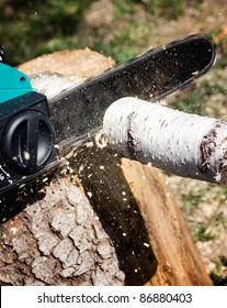 Man is sawing logs for firewood with electric saw on the tree stump