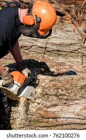 A man sawing a tree trunk with a chainsaw