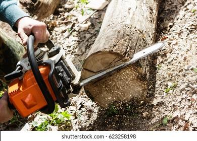Man sawing wood log with a chainsaw