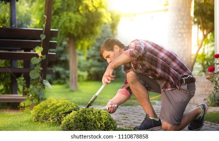 Man with scissors trimming thuja bush in garden in springtime