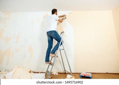 Removing Wallpaper Images Stock Photos Vectors Shutterstock