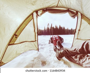 Man set snowshoes and trekking sticks for walk. Light tent set in the mountains. Winter trip.