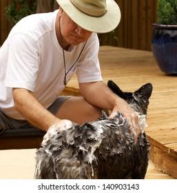 man shampoos dog outdoors