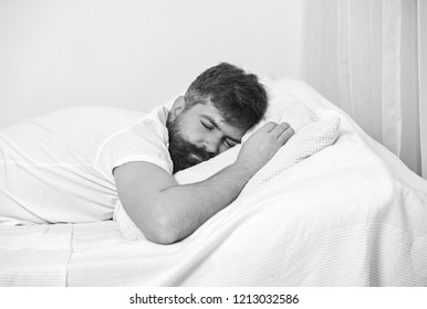 Man in shirt laying on bed, white wall on background. Guy on calm face sleeping on white sheets and pillow. Macho with beard and mustache sleeping, relaxing, having nap, rest. Nap and siesta concept.