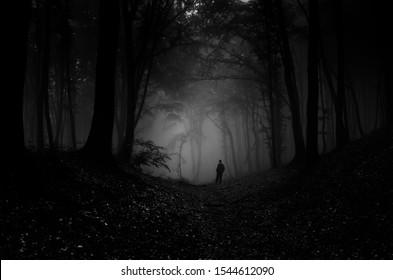 man silhouette in dark forest at night