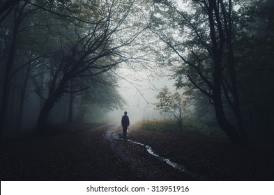 man silhouette at the edge of a dark forest