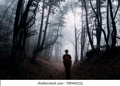man silhouette in magical forest, dark fantasy landscape
