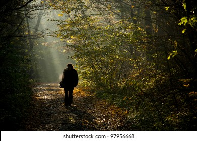 Man silhouette walking on the autumn forest road in the light of the morning sunlight.