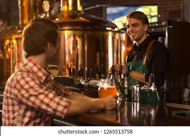 Man sitting at bar counter in beer house  with beer glass in hand. Barmen in black shirt looking at client and smiling. Bronzed kettles and reservoirs of brewery behind.