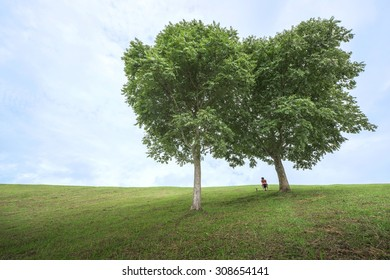A man sitting lonely under the couple of tree