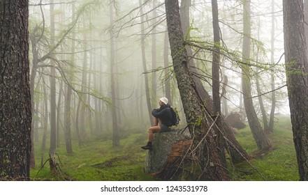 man sitting in misty forest, italian Alps
