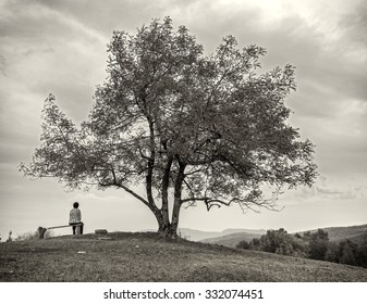 Man sitting on a bench under a tree on the mountain