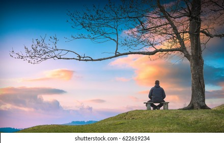 Man sitting on a wooden bench under the big tree and enjoy colorful sunset in a valley.