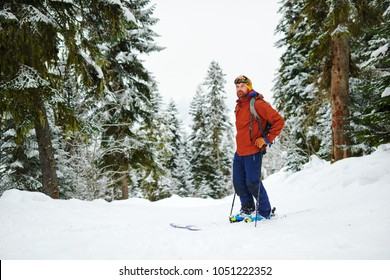 man skier in gear stands on a glade in the forest