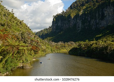 A man in a slalom kayak checks out a New Zealand stream as it flows through a patch of rata and nikau forest near Punakaiki