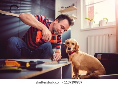 Man with small yellow dog working on a new kitchen installation and using a cordless drill