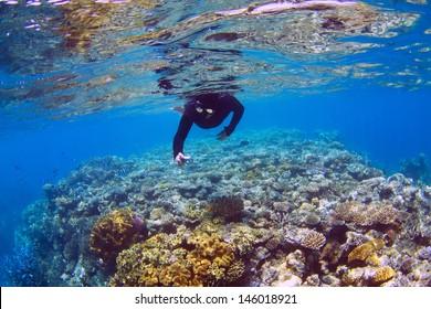 Man snorkeling on coral reef
