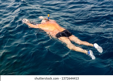 Man snorkeling in the red sea. Hanging on the surface of the sea, look at the coral and fish.