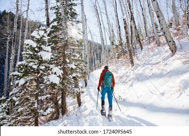Man snowshoeing with sun rays coming through forest trees