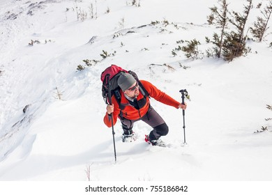 A man in snowshoes and with a backpack climbs up a mountain. A climber with trekking sticks walks through the snow. Climbing in winter. Active lifestyle.