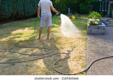 A man is spraying his lawn during a very dry summer in the Netherlands