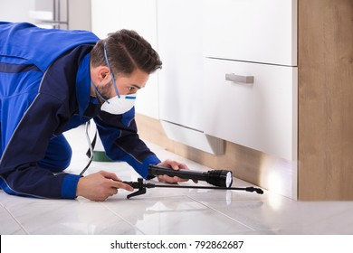 Man Spraying Pesticide Under The Wooden Cabinet In The Kitchen