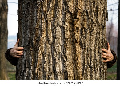 Man standing behind and hugging the three. / Hugging Tree
