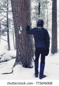 A man standing by a trail sign in Burr pond state park woods in winter after snow in Torrington Connecticut America.