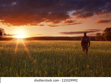 Man standing in a field of crops