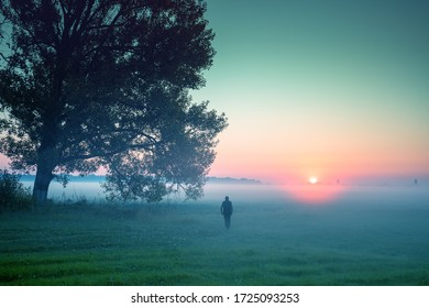 A man standing in the field in early morning in spring and looking at sunrise