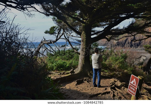Man standing on the forested coast of Oregon