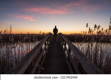 Man standing on a small bridge, looking at the sunset in a nature reserve. Drenthe, Holland.