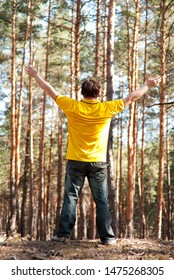 man standing in the pine forest