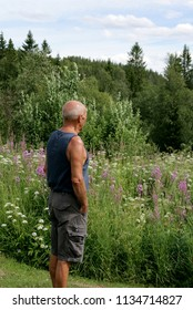 Man standing in a summer meadow