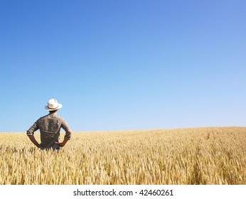 Man standing in wheat field. Horizontally framed shot.