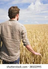 Man standing in wheat field touching crop