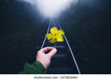 Man stands on the train tracks and holds a yellow leaf in the Hand