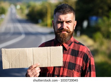 Man with strict face and beard travelling by hitchhiking with road on background. Travelling and hitchhiking concept. Hipster try to stop car with cardboard sign, copy space.
