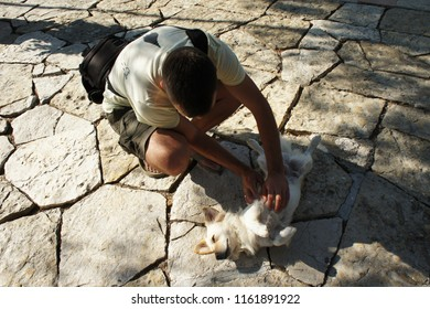 A man stroking the happy dog laying on his back on the old ckracked stony ground