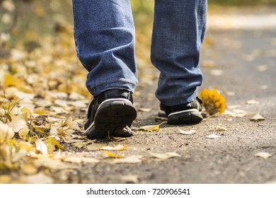 a man strolls along the autumn trail