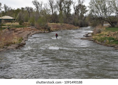 Man surfing on river at river park in Montrose, Colorado.  Water sports. Surf the current.