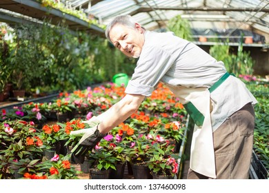 Man taking a flower pot in a greenhouse