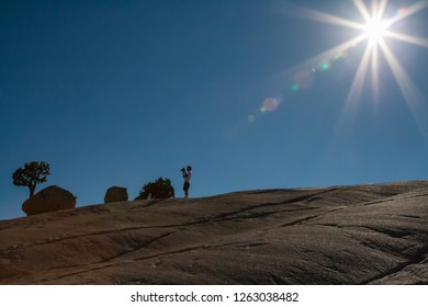 A man taking photo of pine tree between big boulders at Olmsted Point, Yosemite National park, CA, USA. Clear blue sky, sun rays and lens flare with big boulders, pine tree at Olmsted Point, Yosemite.