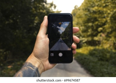 Man with tattooed hand holding smartphone to taking photo of forest. Smartphone in mans hand in nature.Person using smartphone in hand with blurry background of park, Phone and tattoos