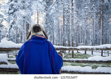 Man in traditional Sami clothes looking at his deers