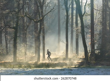 Man trail running in the forest on a foggy, spring morning.